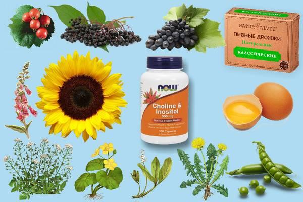 Холин (Витамин В4)